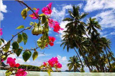 波拉波拉岛Bora BoraIsland