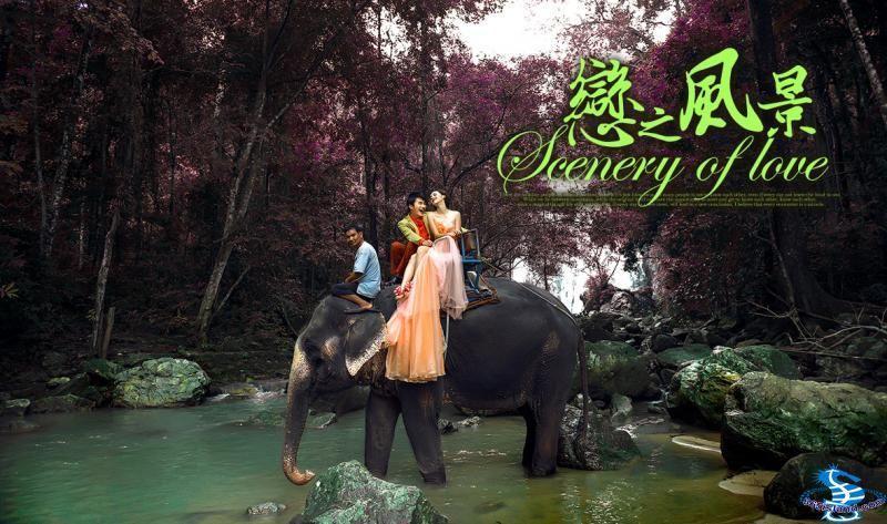 苏梅岛丛林大象婚纱摄影