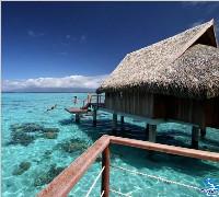 索菲特茉莉雅度假村Sofitel Moorea Ia Ora Beach Resort